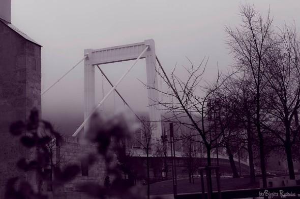 Purple - Elisabet Bridge, Budapest