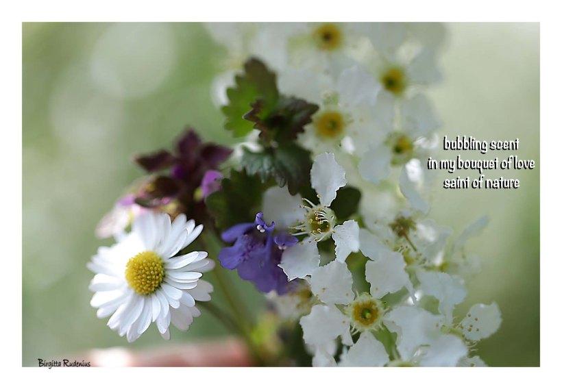 Haiku & Haiga by Birgitta Rudenius